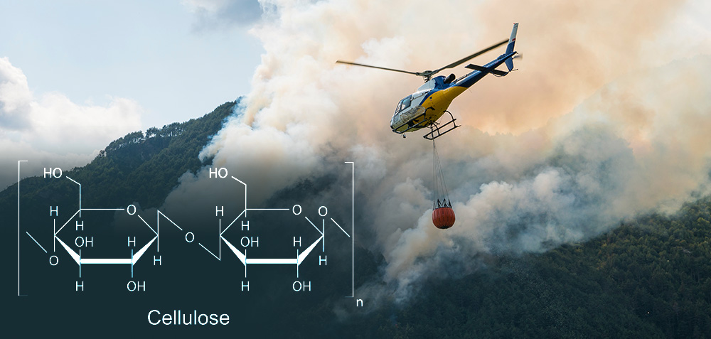 Cellulose gel holds promise to help prevent wildfires